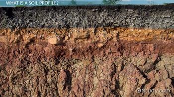 Soil profile definition development types video for Soil definition geology