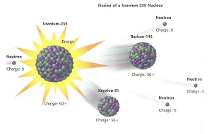 definition of nuclear fission A splitting apart division into parts nuclear fission biol a form of asexual reproduction, found in various simple plants and animals, in which the parent organism divides into two or more approximately equal parts, each becoming an independent individual to undergo or cause to undergo.