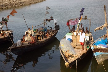 Fisheries in India: Conservation, Laws & Regulations   Study com