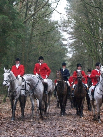 People Prepare for a Fox Hunt