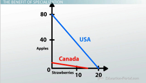 Fruit Opportunity Cost Graph