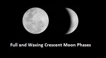 Primary Homework Help Moon Shape