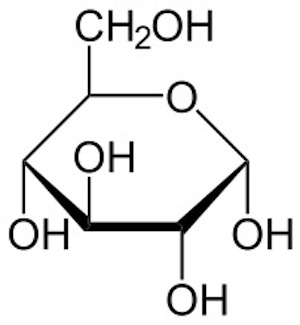 Hydroxyl Group: Definition & Structure
