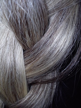 What Causes Gray Hair? | Study com