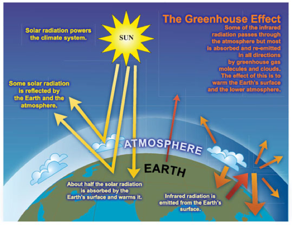 Atmospheric Carbon Dioxide  History  U0026 Environmental
