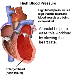 Atenolol heart rate
