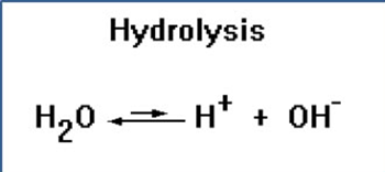 hydrolysisreaction