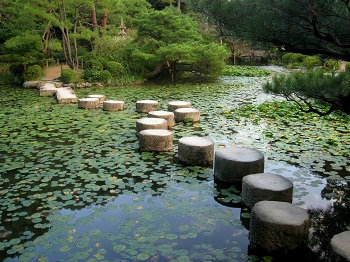 Japanese pond gardens design plants koi for Japanese koi pond garden design