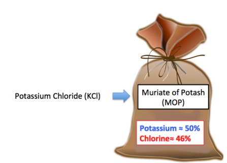 What Is Potassium Chloride Uses Formula Side Effects Video