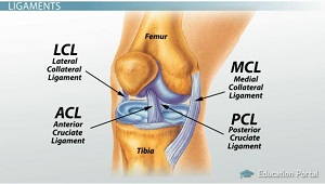 how to find is knee ligaments ijured