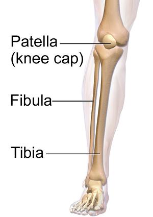 What are Shin Splints? - Definition & Symptoms | Study.com