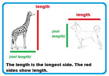 length lesson for kids definition measurement study com