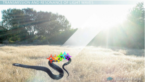 Light Waves Snake Example