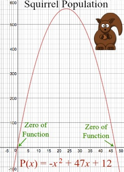 Using the Location Principle to Identify Zeros of Polynomial