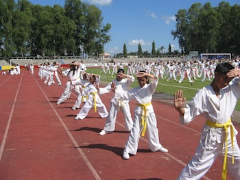 Image of martial arts students