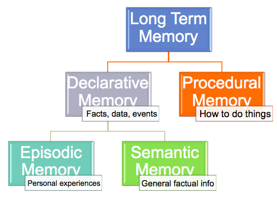 an analysis of the definition types and process of human memory Essay on three different types of human memory  throughout this research,  topics such as definition ofshow more content  the brain is only reflected  to process information that will be useful at a later date, and to allow the rest or in .