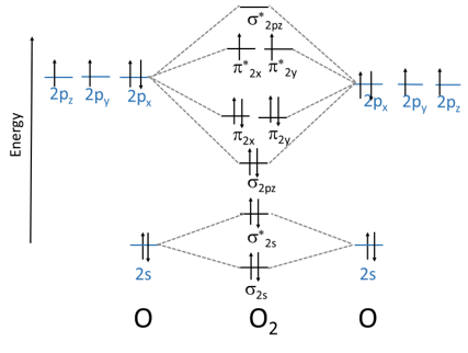 How To Draw Molecular Orbital Diagram Study