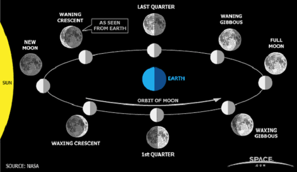 The Lunar Cycle and the Phases of the Moon
