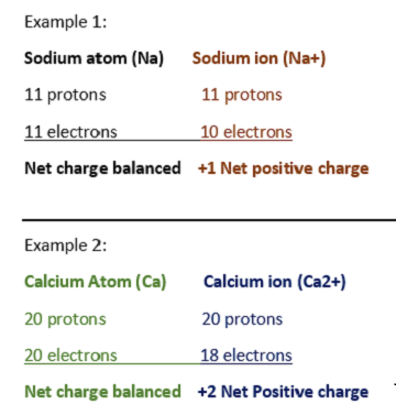 examples of net charges