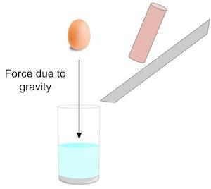 Newton's First Law of Motion Experiment | Study.com