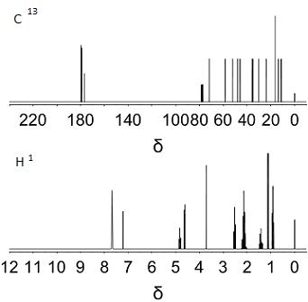 Nmr Spectroscopy Protein Structure Determination Study Com