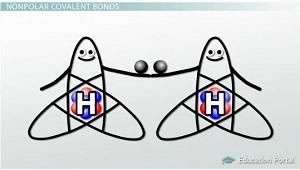 Nonpolar Covalent Bonds Nonpolar Covalent Bond Examples