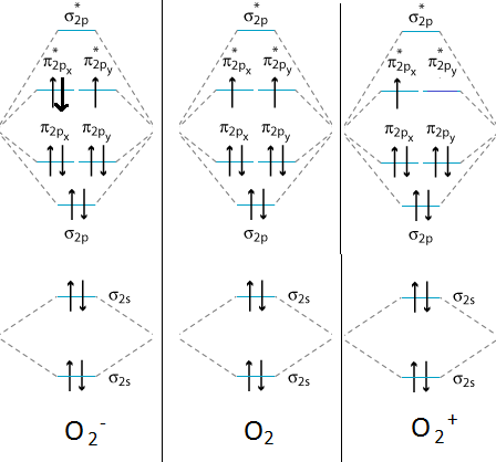Based On The Mo Diagrams For O 2 O 2 And O 2 Answer The Following 1 Is O 2 Paramagnetic Or Diamagnetic 2 Which Will Have The Shortest Bond Length 3 Which Will Have The