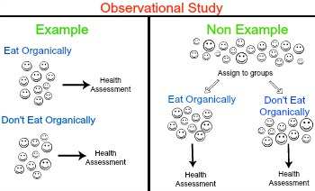 how to live with observational studies In this observational study we included patients aged 75+ living in their and independence in primary activities of daily living by the barthel nursing care needs and services utilised by home-dwelling elderly with complex health problems: observational study gro n ss 1 email author.