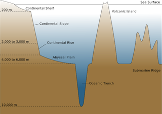 Abyssal plain definition facts for Ocean floor features definition