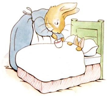 The Tale of Peter Rabbit Summary   Study com