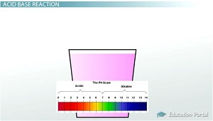 pH Scale Image