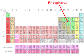 What is phosphorus element uses facts properties study periodic urtaz Choice Image