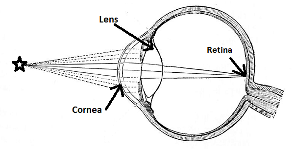Lens of the eye definition function video lesson transcript human eye ccuart Images
