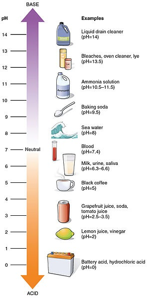 What is an Alkali? - Lesson for Kids | Study.com