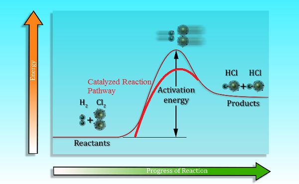 Diagram of chemical reaction pathway also showing the catalyzed pathway