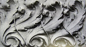 Acanthus Leaves Architecture Design Amp Symbolism Study Com