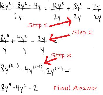 Dividing a Polynomial by a Monomial | Study.com