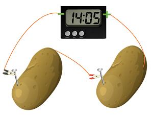 how to make a potato clock science project study com Potato Clock Illustration experiment setup
