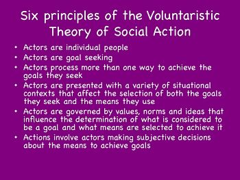 principles: voluntaristic theory of social action