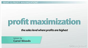 profit maximization vocabulary definitions