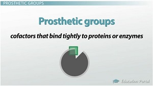 Prosthetic Groups