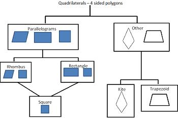 Quadrilateral Flow Chart Quadrilateral Venn Dia...