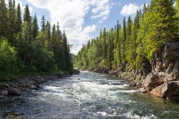 Fresh Water Ecosystems 11