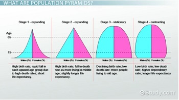 Stages of Population Pyramids