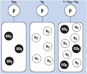 total pressure is the sum of the partial pressures of the individual gases