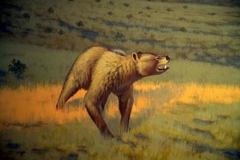 Bear Skull Drawing Short-Faced Bear Facts...