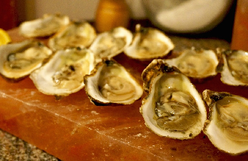 Some shucked (opened) oysters on a stone slab