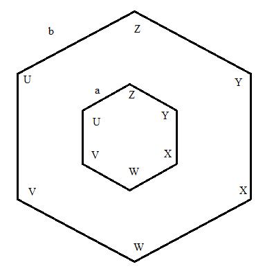 Quiz & Worksheet - Similar Polygon Practice   Study.com
