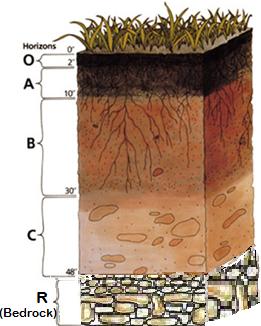 Bedrock: Definition & Composition | Study.com