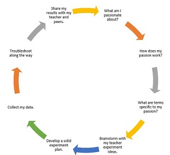 my idea human behavior organization project Find and save ideas about behavior reflection on pinterest projects and behavior plans to suit almost any grade level behavior management idea.